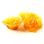 jasmine-orange-large