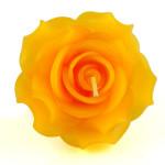 orange-rose-large