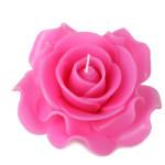 pink-rose-xl-large