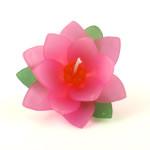 pink_lotus_large_5