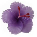 purple-hibiscus-large