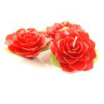 red-jasmine-large
